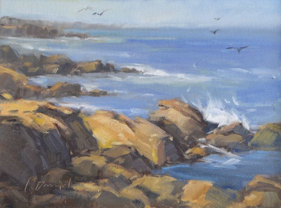 """""""Sea Spray"""" original fine art by Laurel Daniel"""