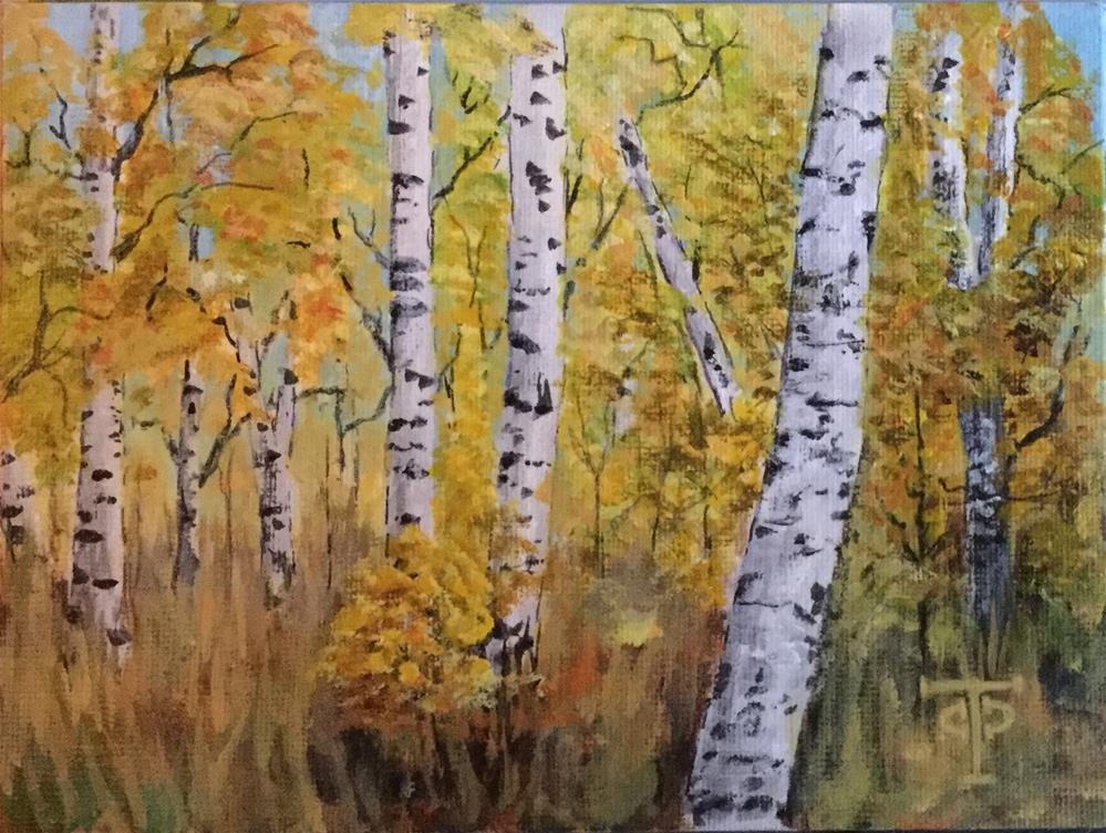 """Aspen Grove Loop"" original fine art by T.C. Poole"