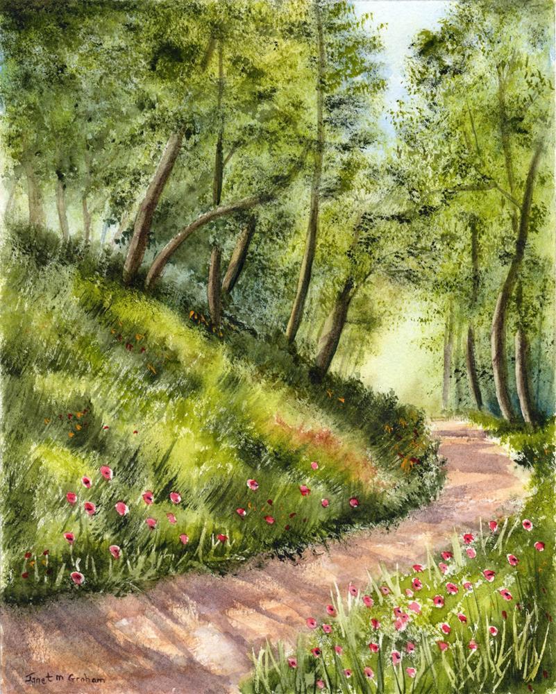 """Summers Day"" original fine art by Janet Graham"