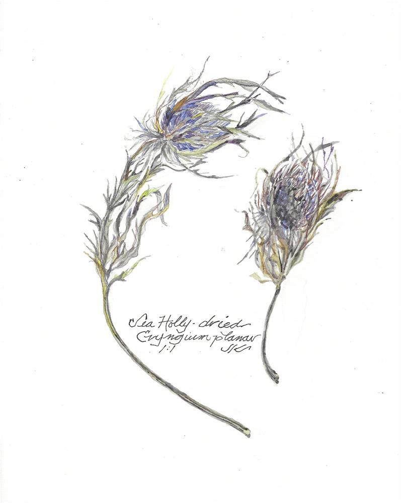 """Sea Holly - Eryngium planar"" original fine art by Jean Krueger"