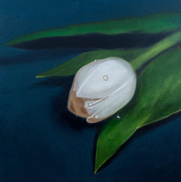 """""""Single Tulip"""" original fine art by Lauren Pretorius"""