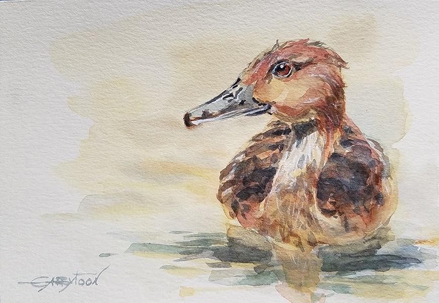 """""""Swimming Duck"""" original fine art by Gabriella DeLamater"""
