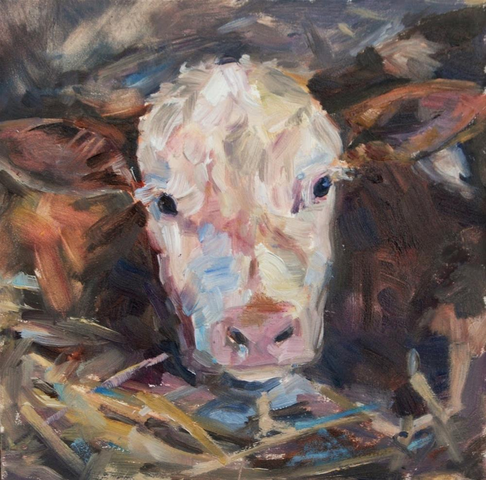 """Hereford Calf, White faced calf, Orignal oil by Carol DeMumbrum"" original fine art by Carol DeMumbrum"