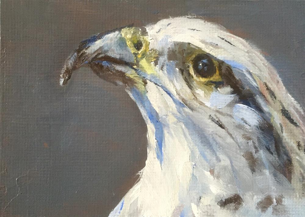"""Gyrfalcon Portrait"" original fine art by Gary Bruton"