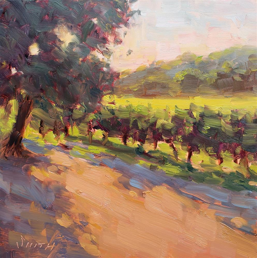"""Vineyard Sunset"" original fine art by Barbie Smith"