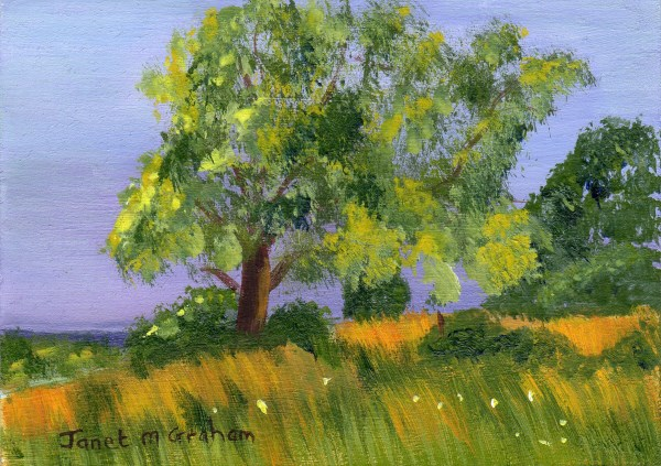 """""""Hill Top ACEO"""" original fine art by Janet Graham"""