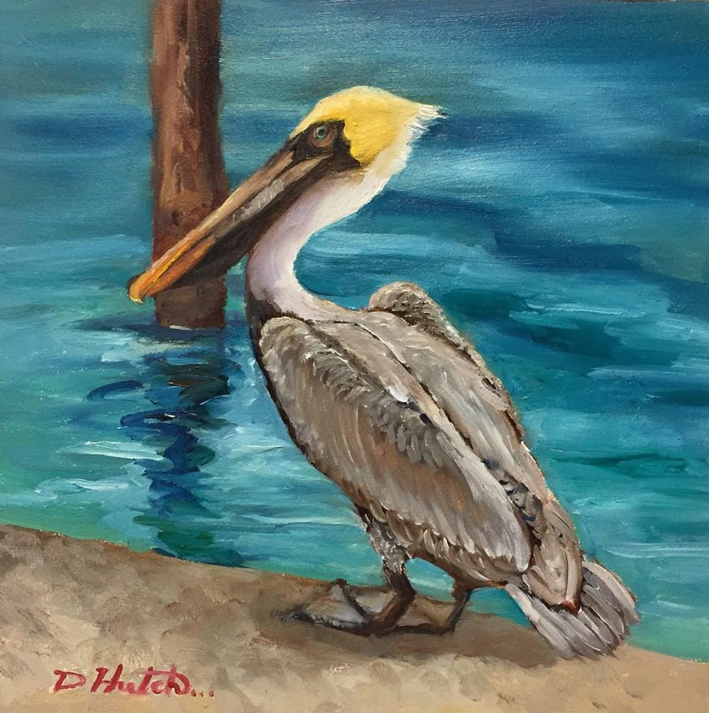 """Pelican #2"" original fine art by Diane Hutchinson"