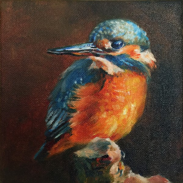 """kingfisher"" original fine art by Joy Cai"