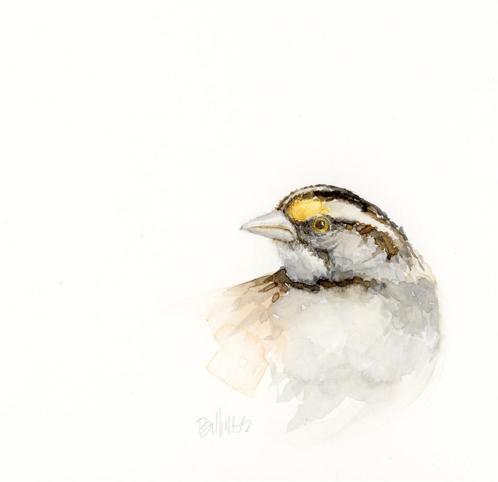 """""""Sparrow Portrait II"""" original fine art by Susanne Billings"""