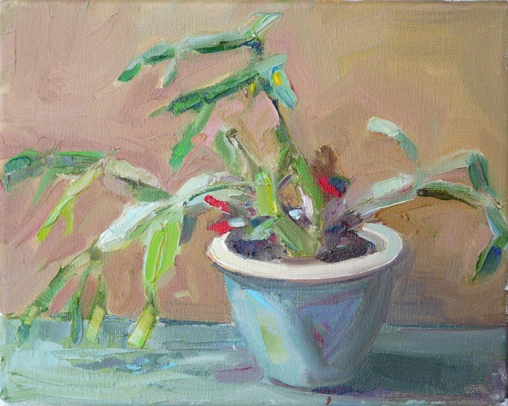 """Christmas Cactus,still life,oil on canvas,8x10,price$200"" original fine art by Joy Olney"