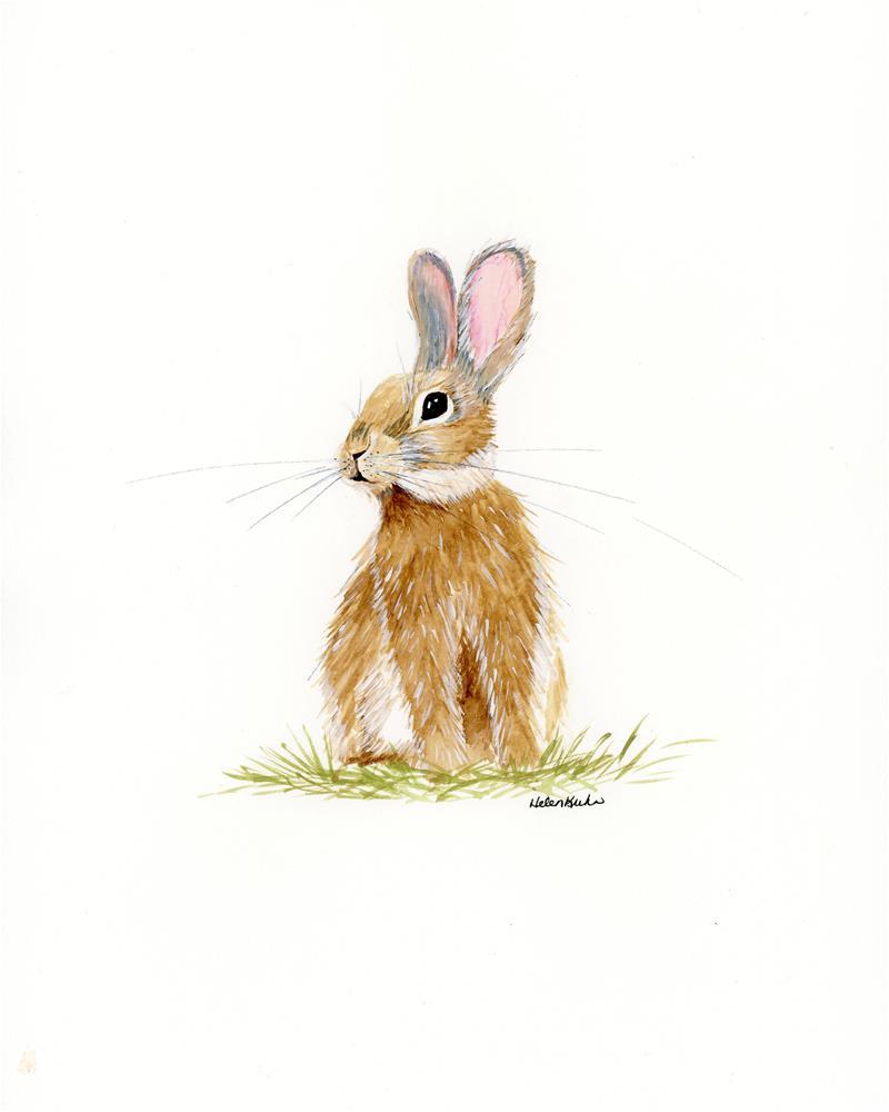 """""""Butterscotch Rabbit"""" original fine art by Helen Kuhn"""