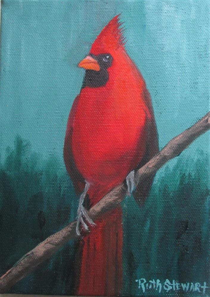 """Papa Cardinal"" original fine art by Ruth Stewart"