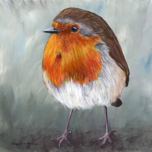 """Robin No 15"" original fine art by Janet Graham"