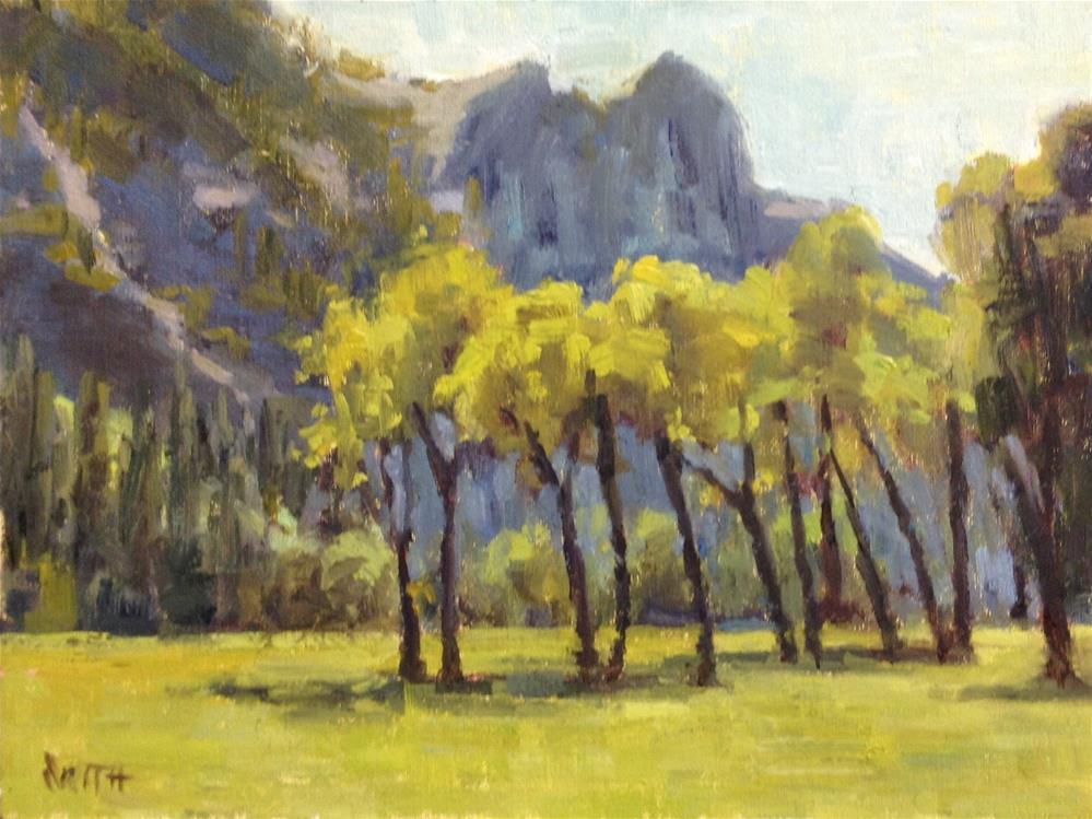 """Yosemite Spring"" original fine art by Barbie Smith"