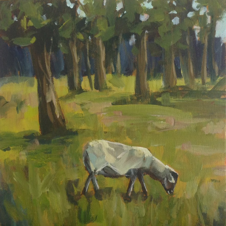 """Grazing Sheep"" original fine art by Shannon Bauer"