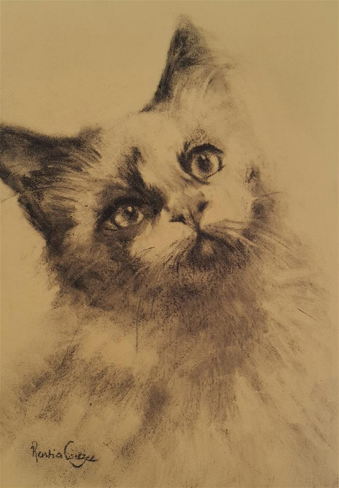 """Feline beauty"" original fine art by Rentia Coetzee"