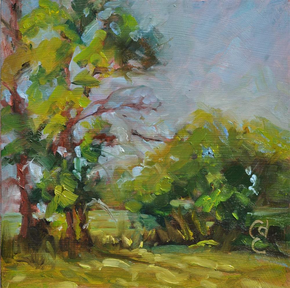 """The Tallest Trees"" original fine art by Catherine Crookston"