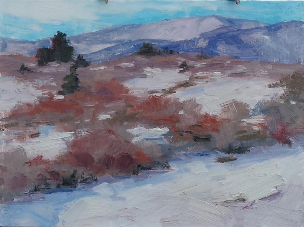 """Edge of Ken Caryl"" original fine art by Sheila Marie"
