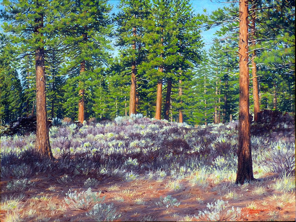 """C1684 ""Ponderosa Evening"""" original fine art by Steven Thor Johanneson"