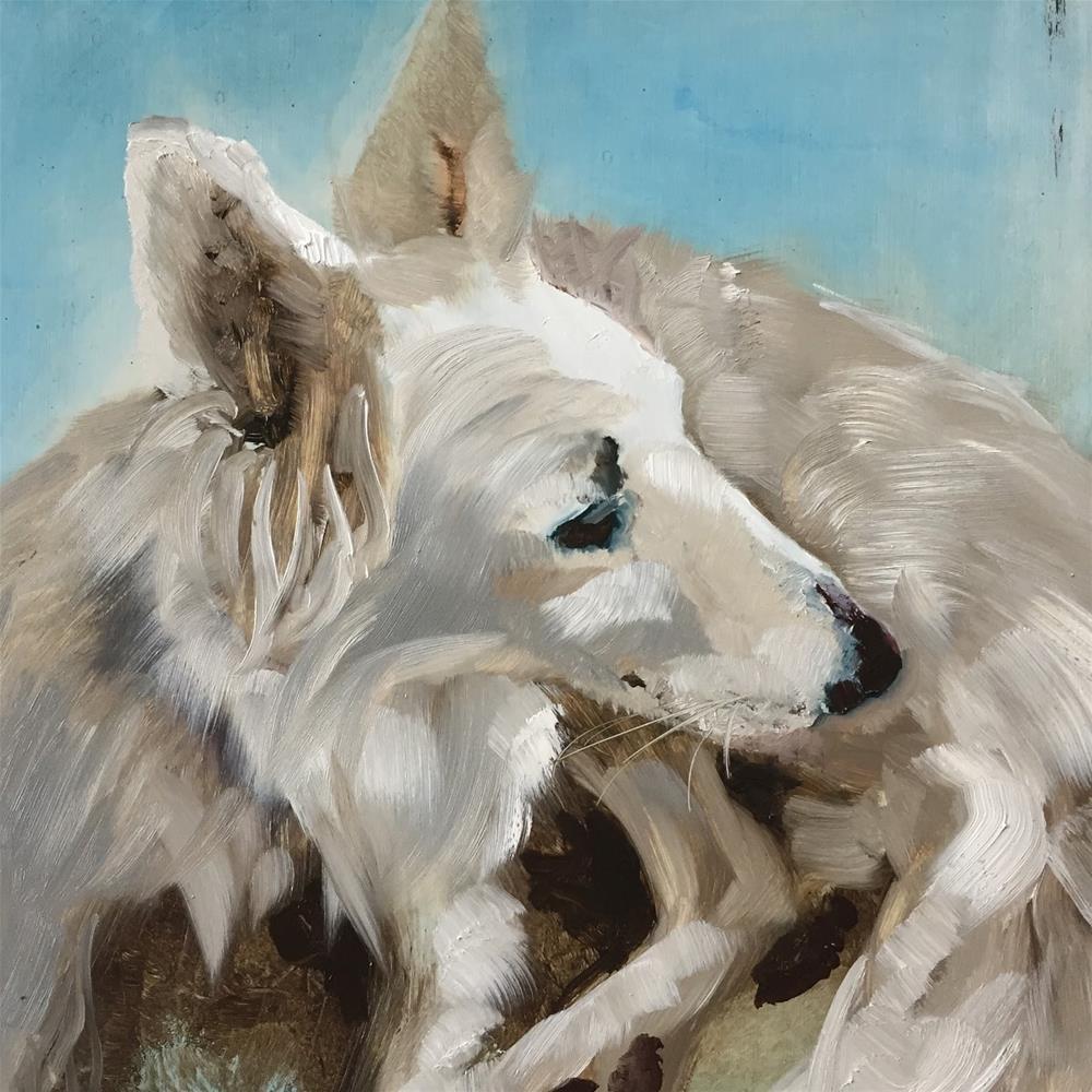 """""""Swiss white shepherd dog"""" original fine art by Philine van der Vegte"""