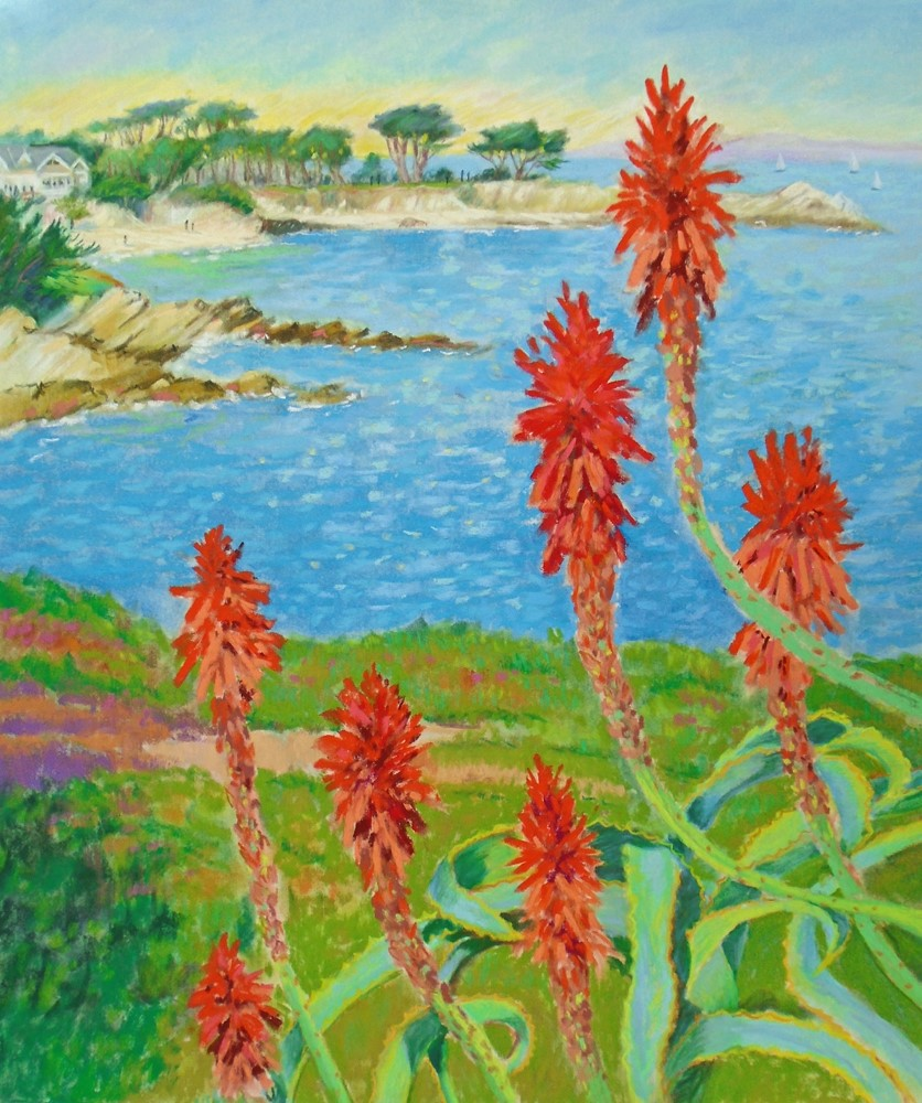 """Blooming Aloe Vera in Pacific Grove"" original fine art by Rhett Regina Owings"