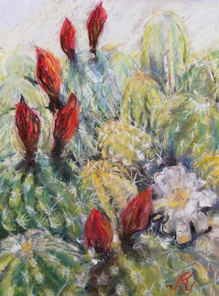 """Argentine Giant Cacti - Echinopsis candicans"" original fine art by Jean Krueger"