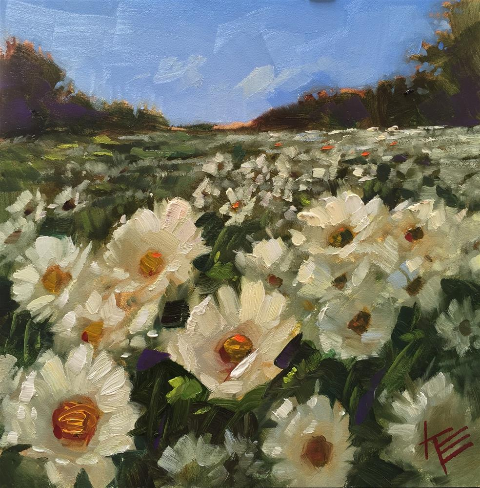 """""""Daisies in the Meadow"""" original fine art by Krista Eaton"""