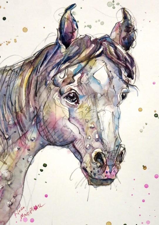 """dappled grey"" original fine art by Nora MacPhail"