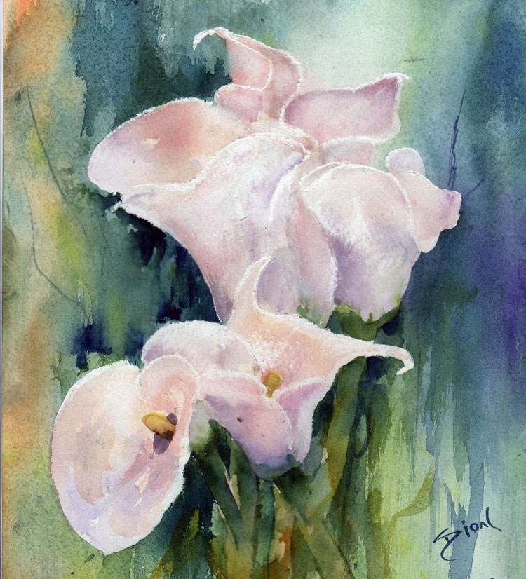 """Calla Collection"" original fine art by Sue Dion"