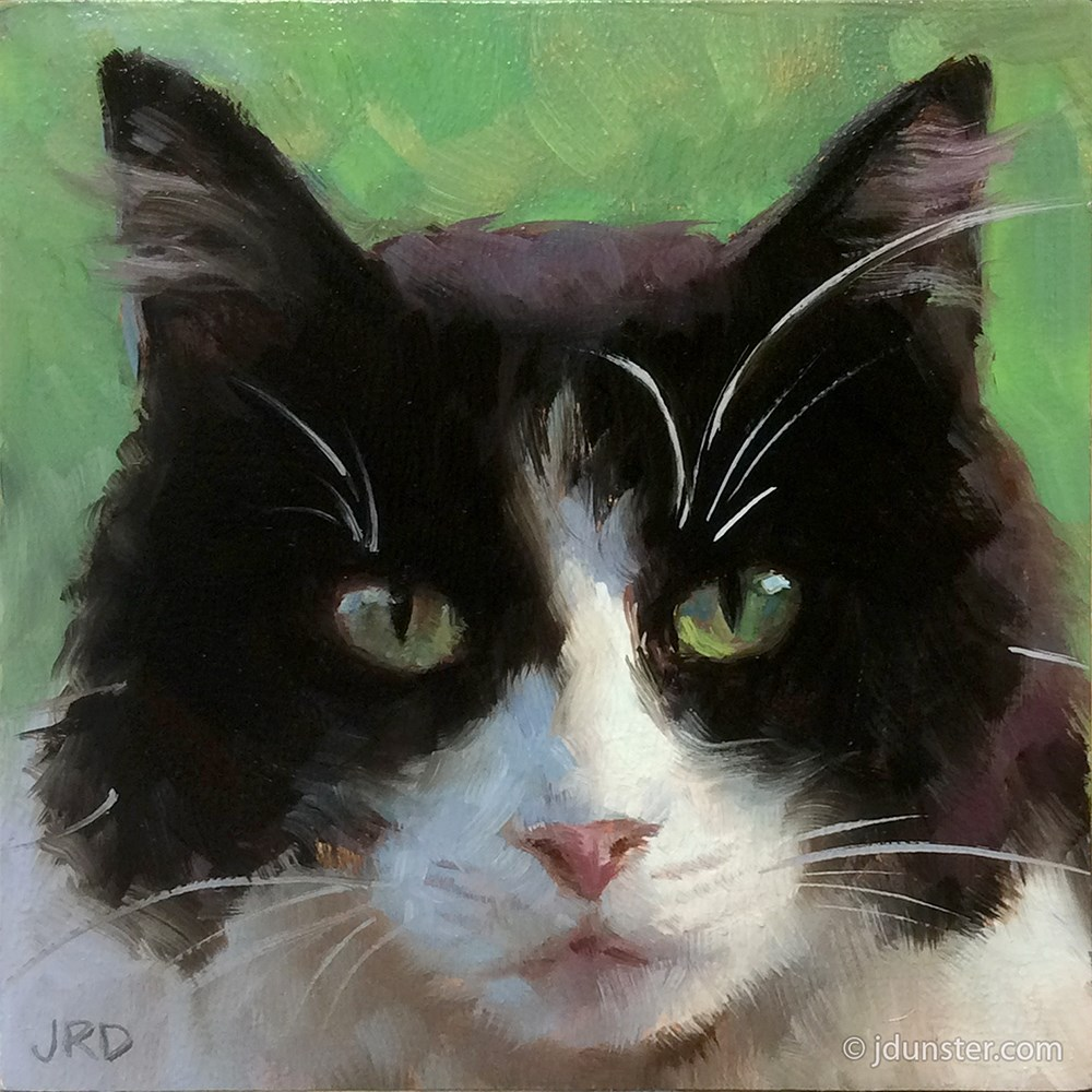 """Fluffy Tuxedo Kitty"" original fine art by J. Dunster"