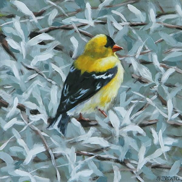 """American Goldfinch"" original fine art by Sarah Becktel"