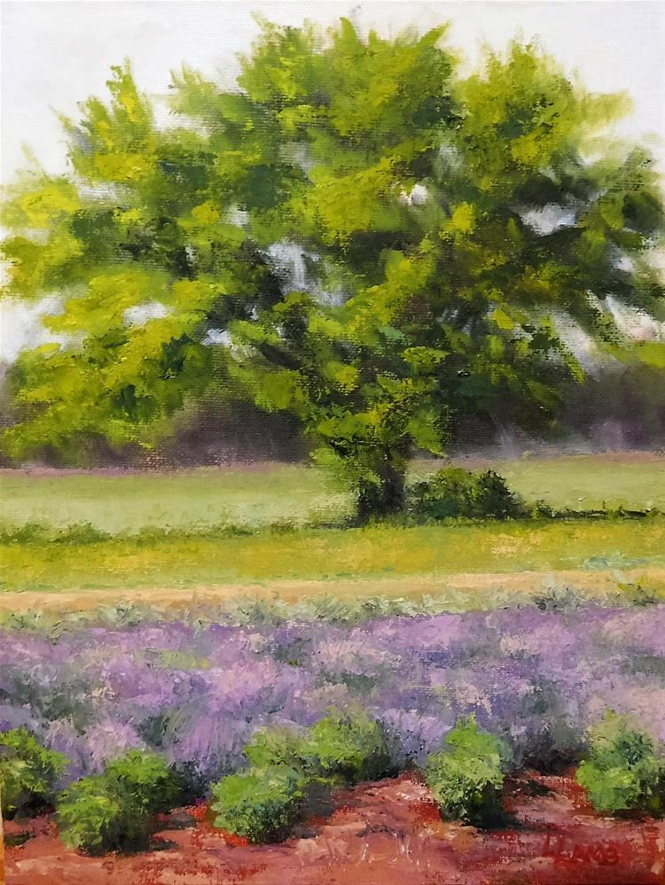 """Lavender View"" original fine art by Lori L. Lamb"