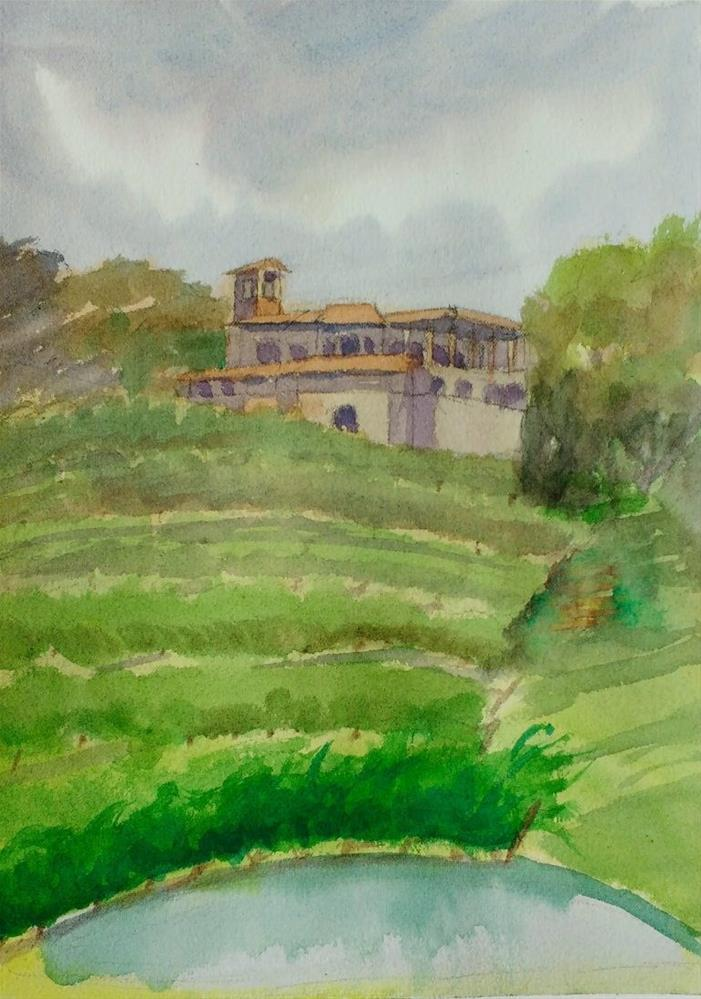"""Hillside Vineyards"" original fine art by Maria Peagler"