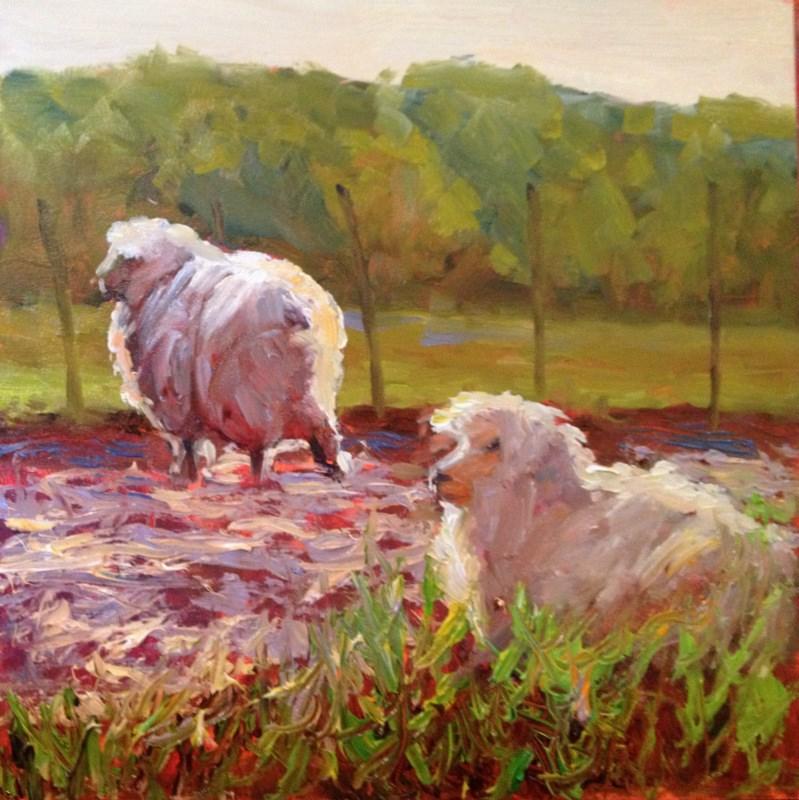 """Sheep in Sunlight, Day 16"" original fine art by Claudia L Brookes"