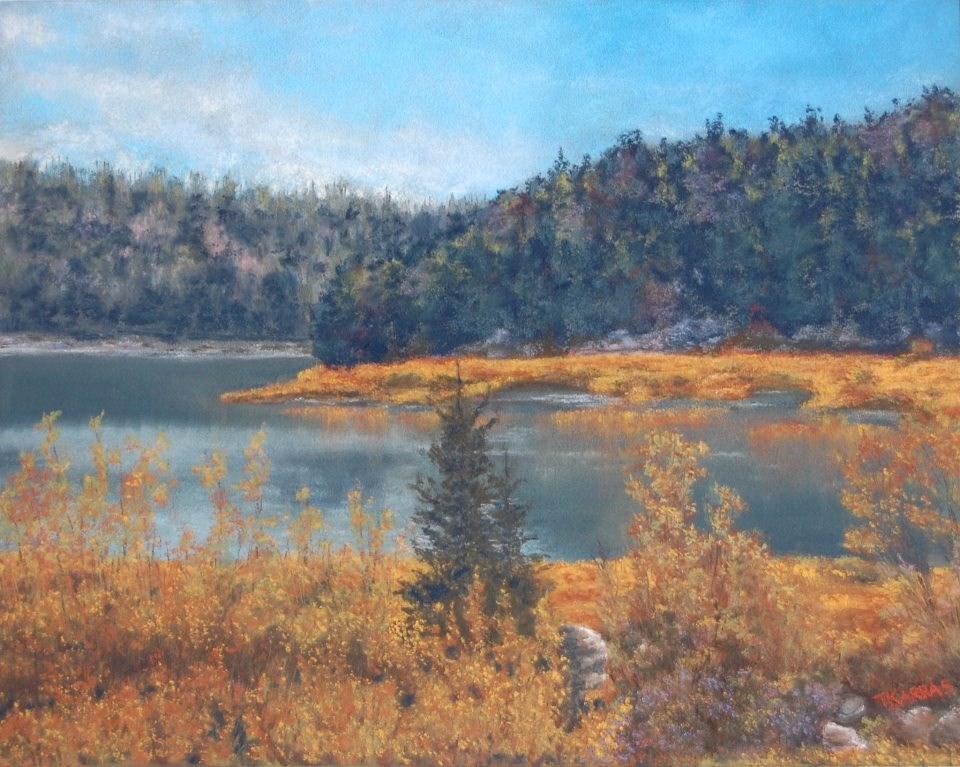 """Wyoming Wilderness"" original fine art by Christina Karras"