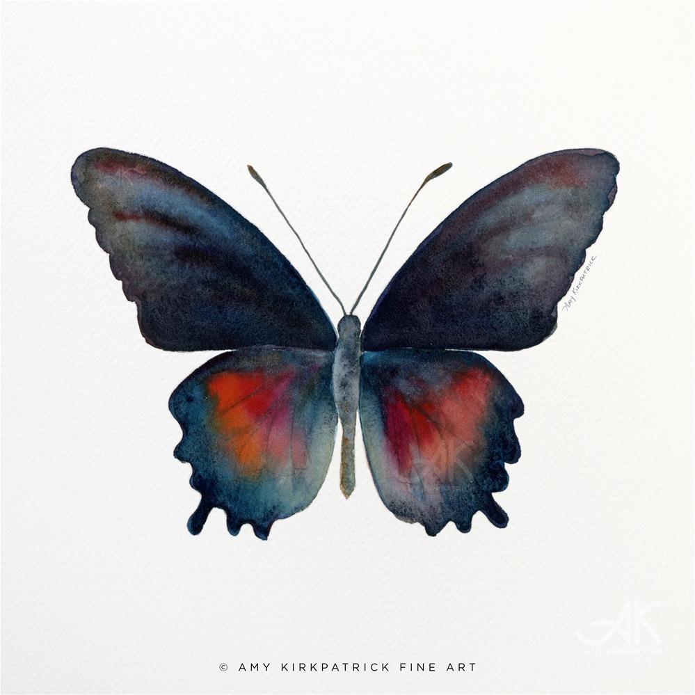 """#49 Parides Orellana Butterfly #0359"" original fine art by Amy Kirkpatrick"