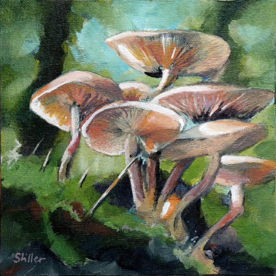 """2262 Sunday Mushrooms"" original fine art by Dietmar Stiller"