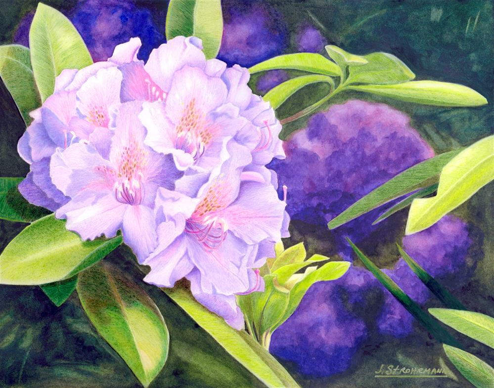 """Rhododendrons at Pt. Defiance"" original fine art by Jeanne Strohrmann"