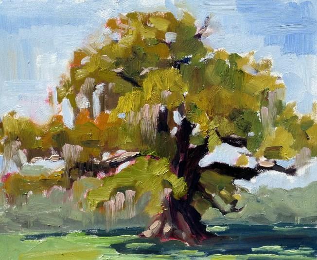 """Airlie Gardens in Wilmington"" original fine art by Deborah Newman"