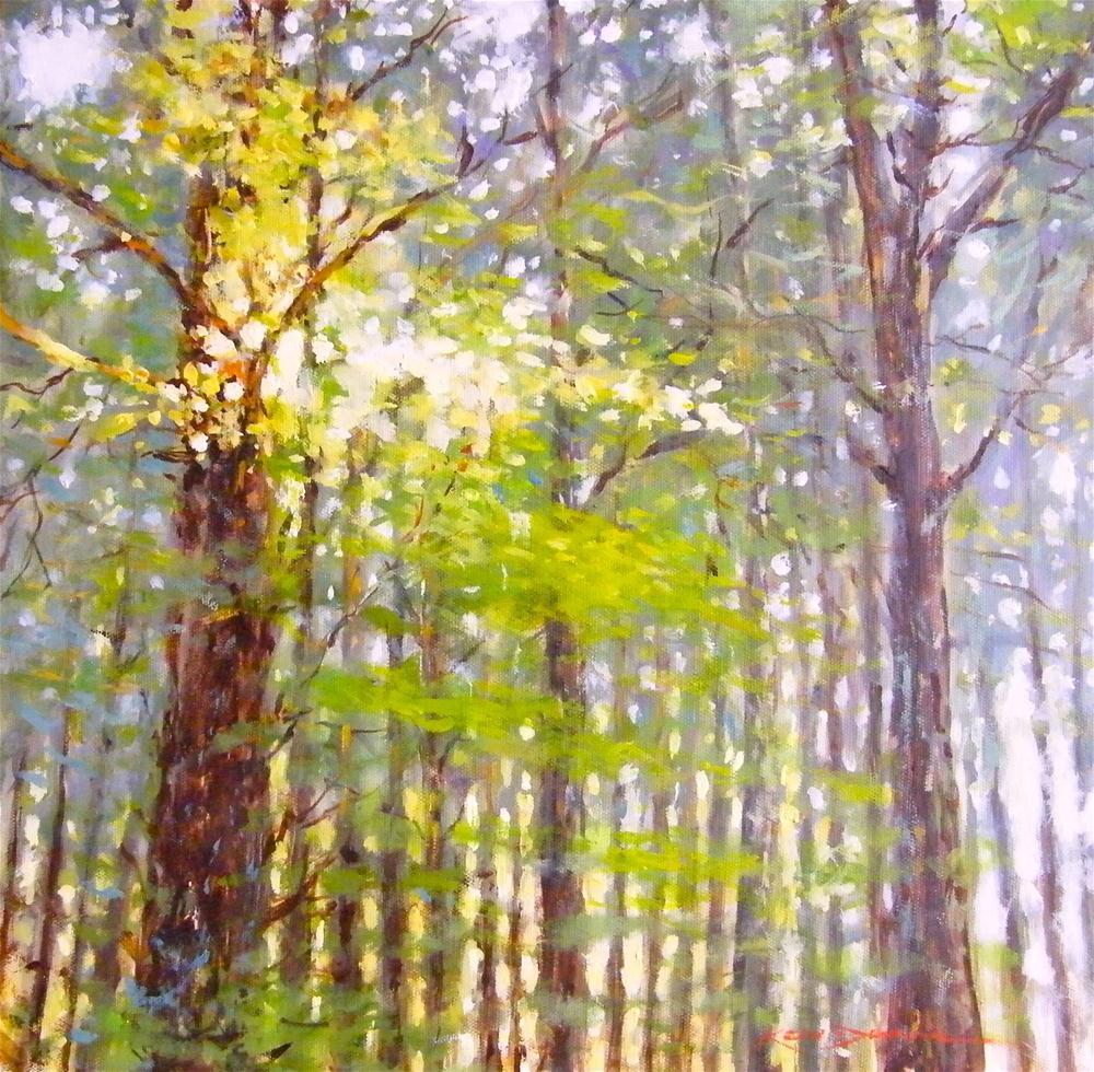 """Morning Light in Yvon's Woods"" original fine art by Ken Devine"