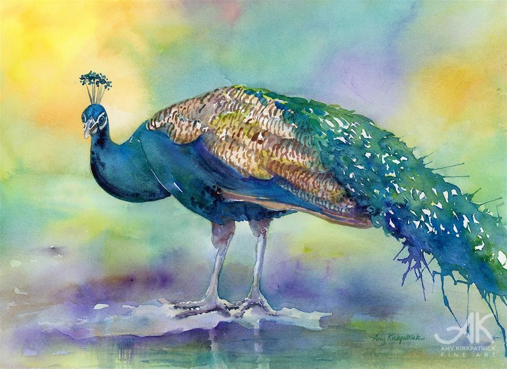 """PEACOCK #0445"" original fine art by Amy Kirkpatrick"