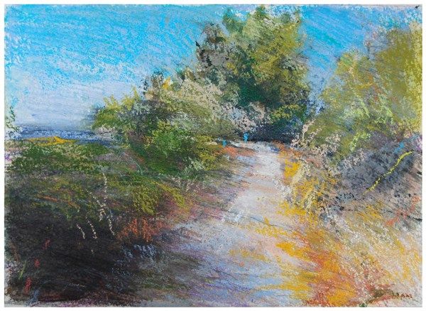"""Sierra Norte path"" original fine art by Steven Goodman"