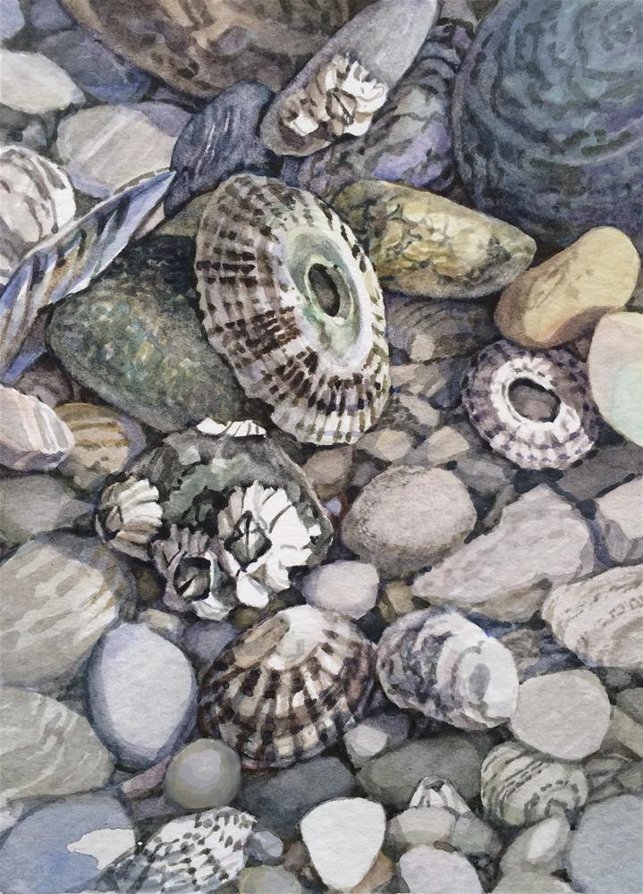 """b Beaches Limpets"" original fine art by Nicoletta Baumeister"