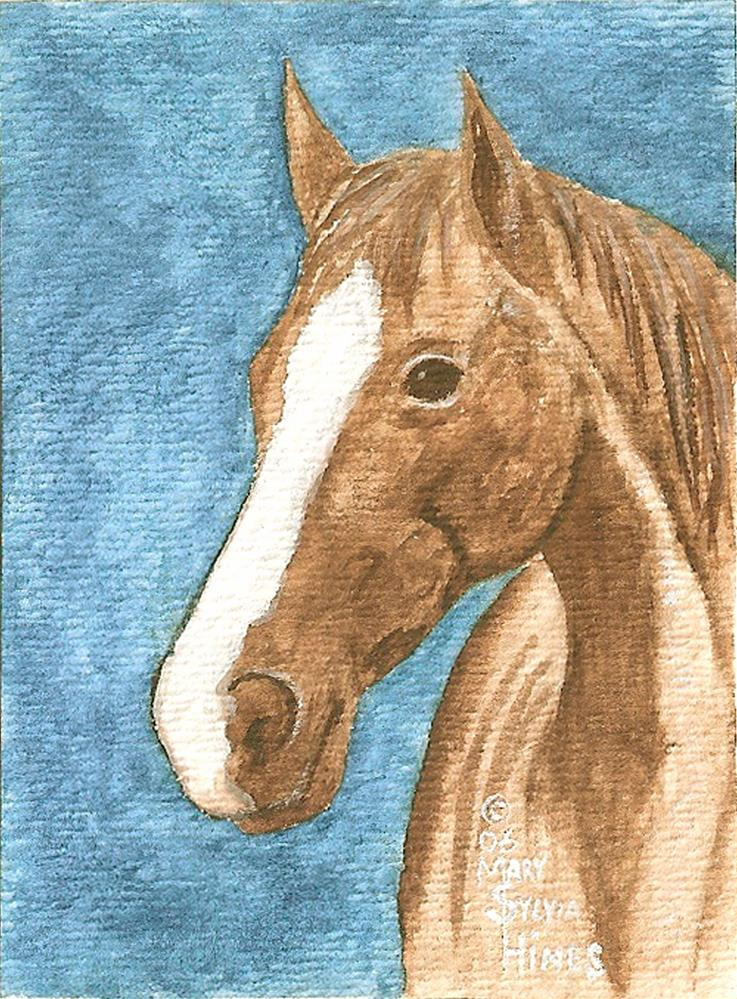"""""""ACEO Brown Horse v2"""" original fine art by Mary Sylvia Hines"""