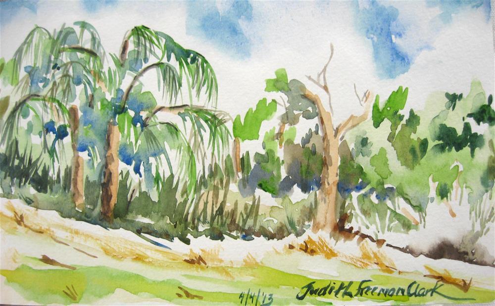 """Backyard, Isabela, P.R."" original fine art by Judith Freeman Clark"