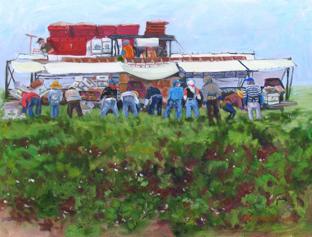 """Harvesting Radicchio"" original fine art by Rhett Regina Owings"