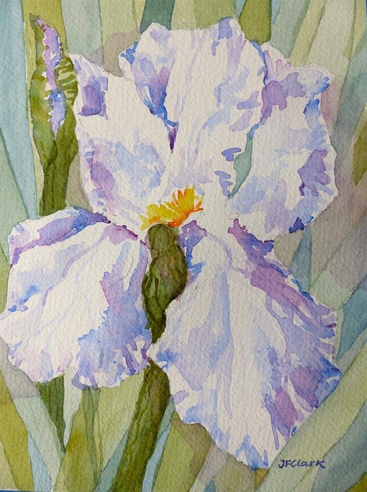 """Shadowy Iris"" original fine art by Judith Freeman Clark"