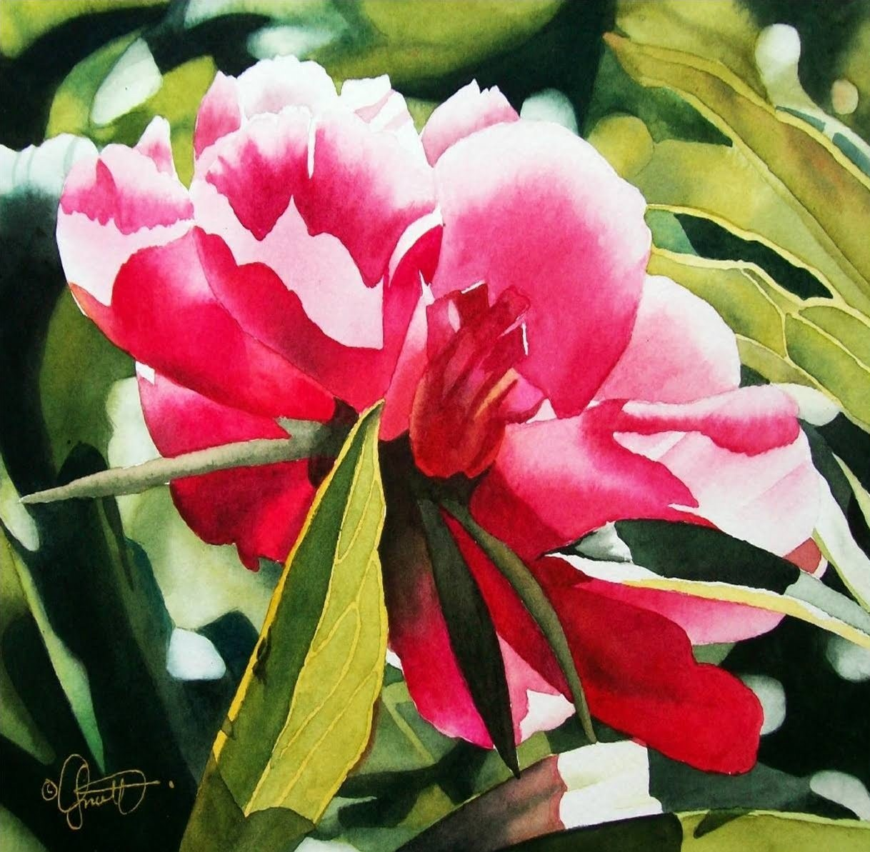 """Peony in the Garden"" original fine art by Jacqueline Gnott, TWSA, WHS"
