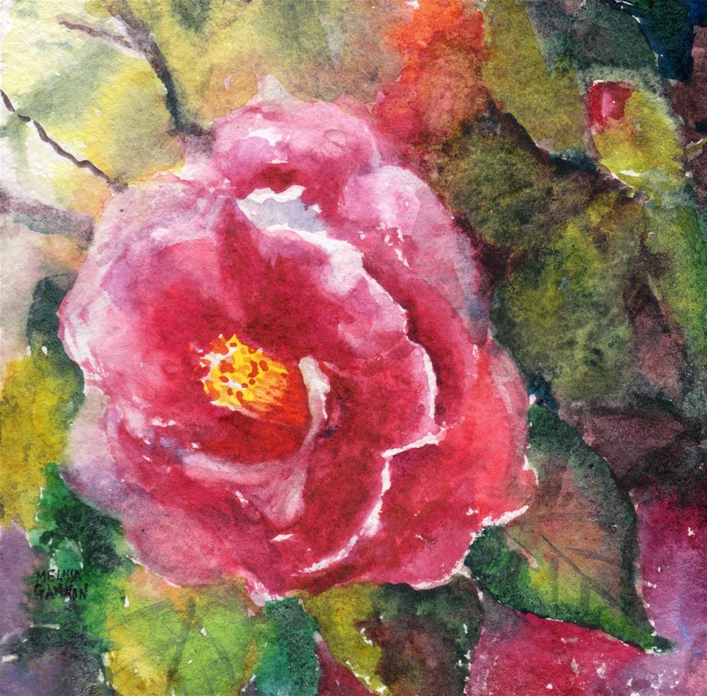 """Camellia Spring"" original fine art by Melissa Gannon"