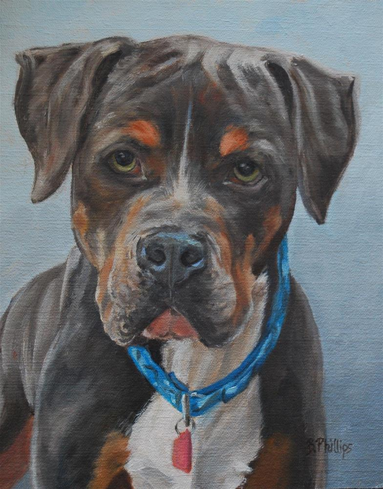 """""""Ike"""" original fine art by Beverley Phillips"""